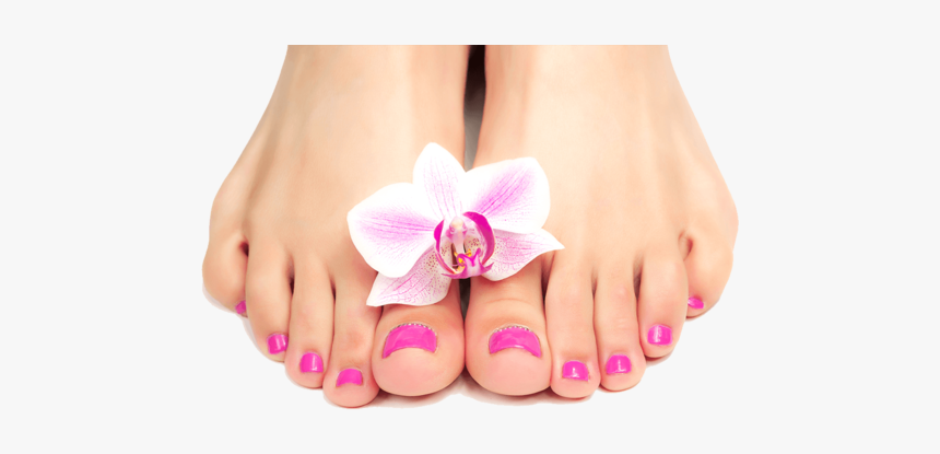 140-1407398_transparent-pedicure-png-png-download